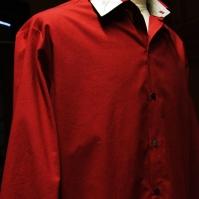 Chemise homme - Voile de coton bio - Garance - Impressions Saule